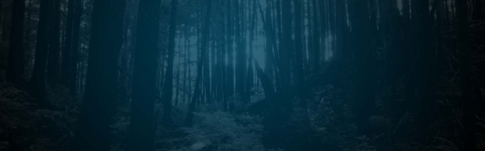 Still of the woods in History's Alone. Flavorlab Sound mixed the series.