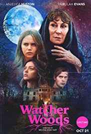 Flavorlab provided sound design and mix for thriller remake, The Watcher In The Woods.