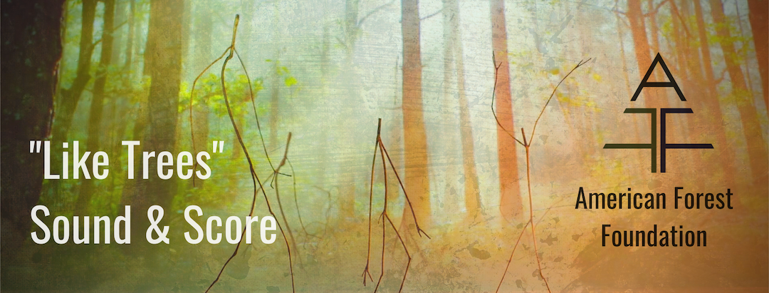 """Still from the """"Like Trees"""" campaign of the American Forest Foundation of 3 human-like twig figures standing in from of a forest with the sun streaming through the trees. Overlaid are the words """"Like Trees"""" Sound & Score & the American Forest Foundation logo. Flavorlab Score & Sound provided full service work for the campaign."""