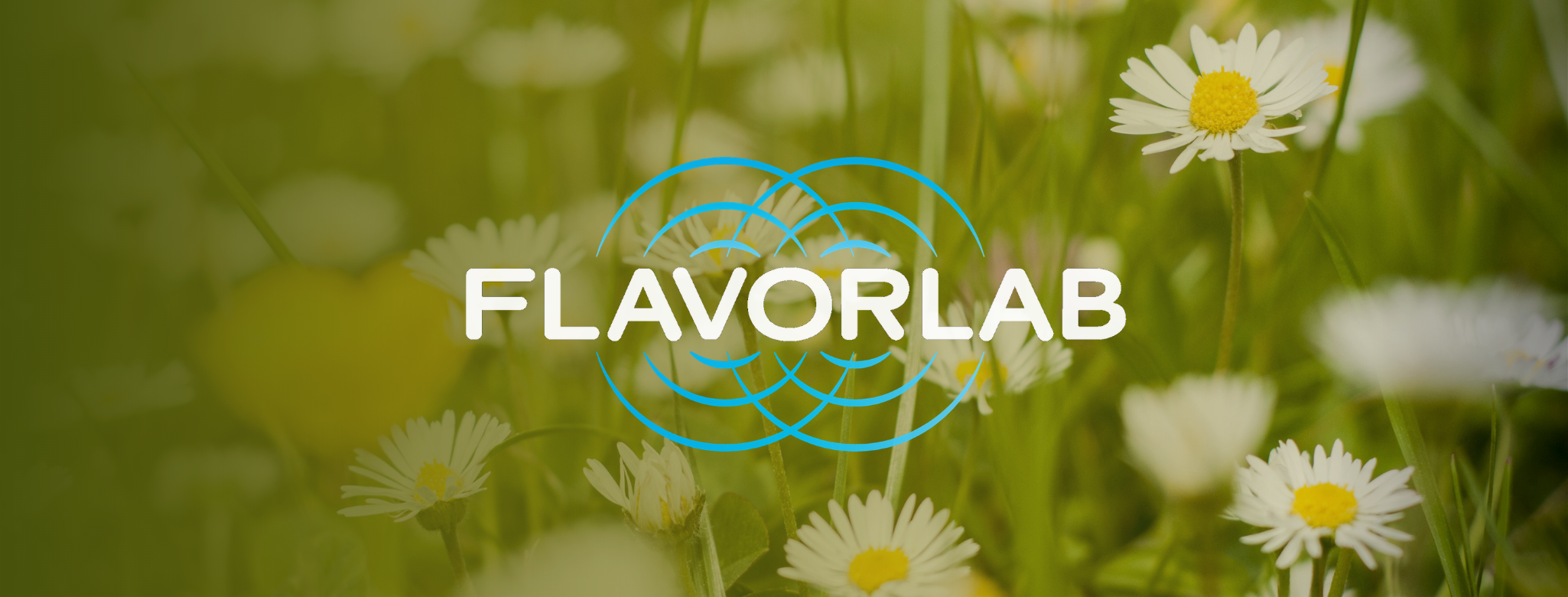 Banner for the 2021 May Tastes playlist - the Flavorlab logo overlaid on a picture of white daisies in a field overlaid with an olive green gradient.